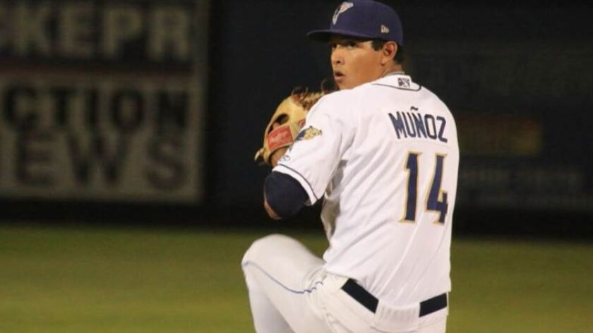 Padres pitching prospect Andres Munoz with the Tri-City Dust Devils.