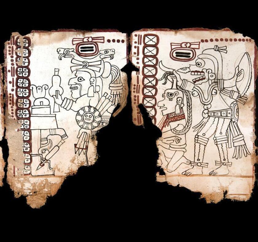 Fotografía cedida hoy, jueves 30 de agosto de 2018, por el Instituto Nacional de Antropología (INAH), que muestra un fragmento del Códice Maya, estudiado en la Biblioteca Nacional de Antropología, en Ciudad de México (México). EFE/INAH/SOLO USO EDITORIAL
