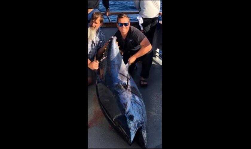 314-pound bluefin tuna is record catch for Newport sportfishing operation
