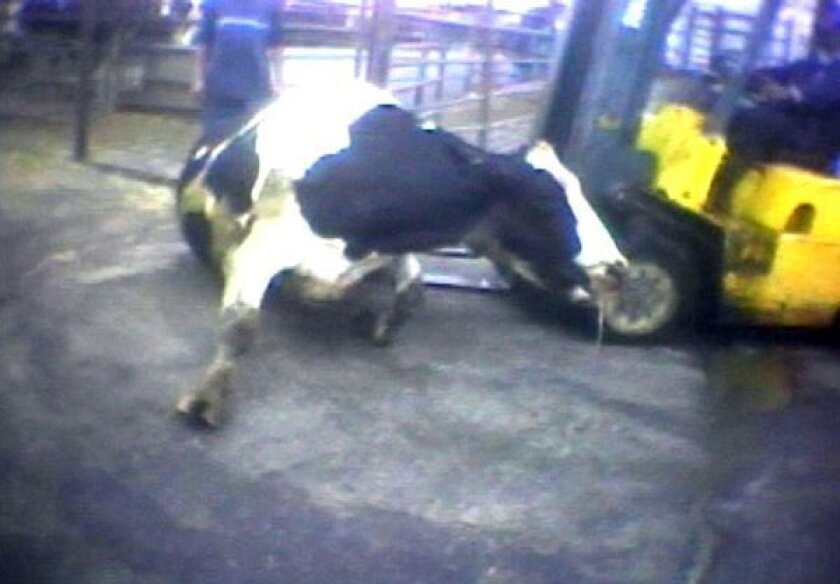 California 'ag-gag bill' is gagged and gone