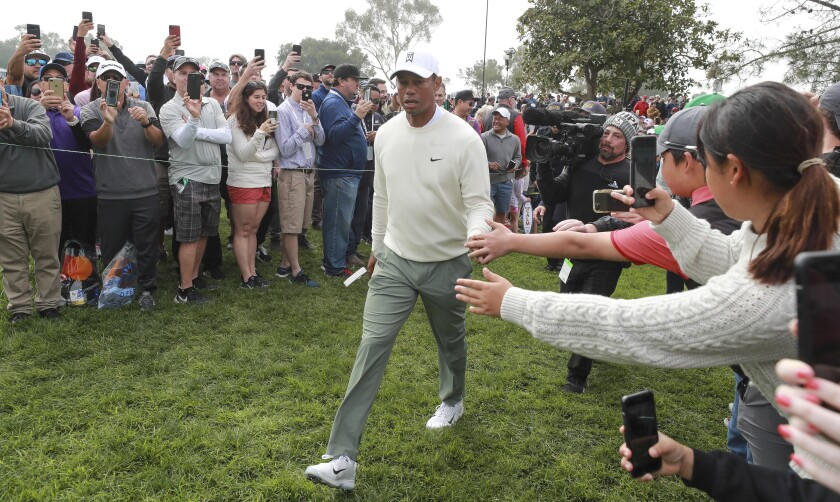 Tiger Woods, shown during this year's Farmers Insurance Open at Torrey Pines, could be returning to the course in the fall if the U.S. Open is moved to San Diego.