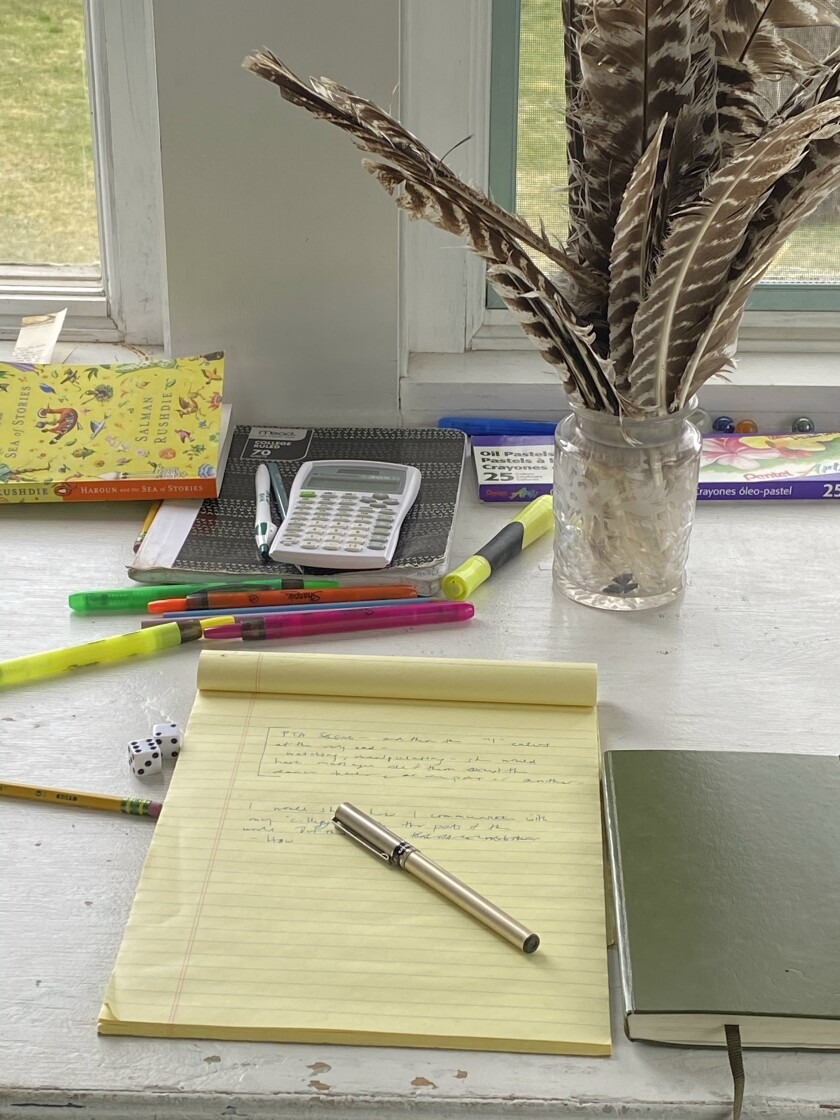 Anna Solomon's shared workspace, with turkey feathers.