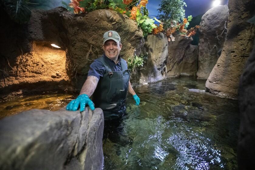 Ian Recchio wading in an amphibian tank