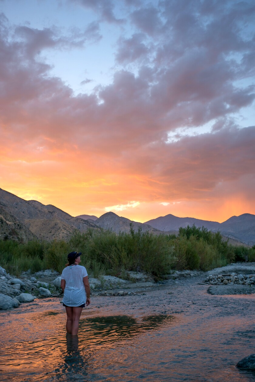 Whitewater Preserve is about a half-hour drive northwest of Palm Springs.