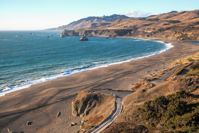 Goat Rock Beach along the Sonoma coast.