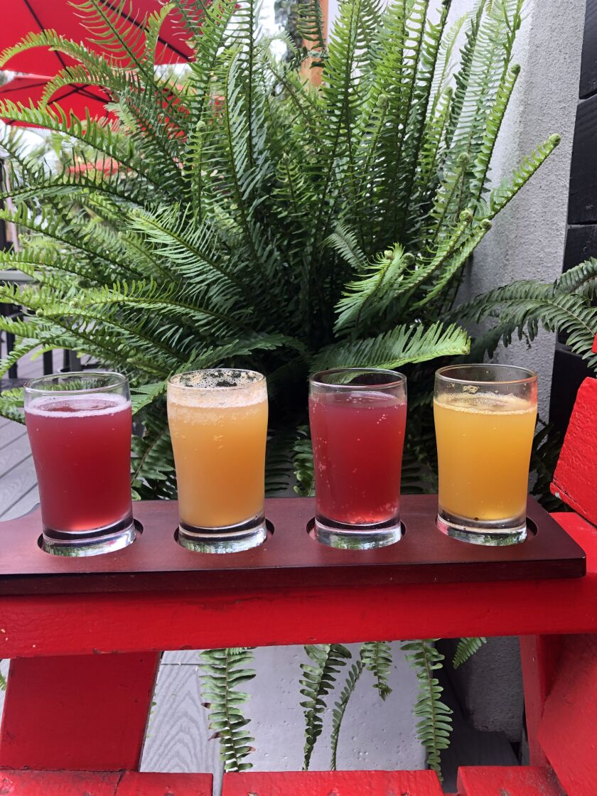 A tasting flight of Bambucha Kombucha at Live Culture Cafe in Leucadia.