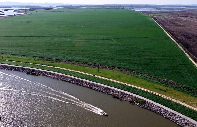 A boat passes Webb Tract farmland as it makes its way through the Sacramento-San Joaquin delta near Isleton, Calif.