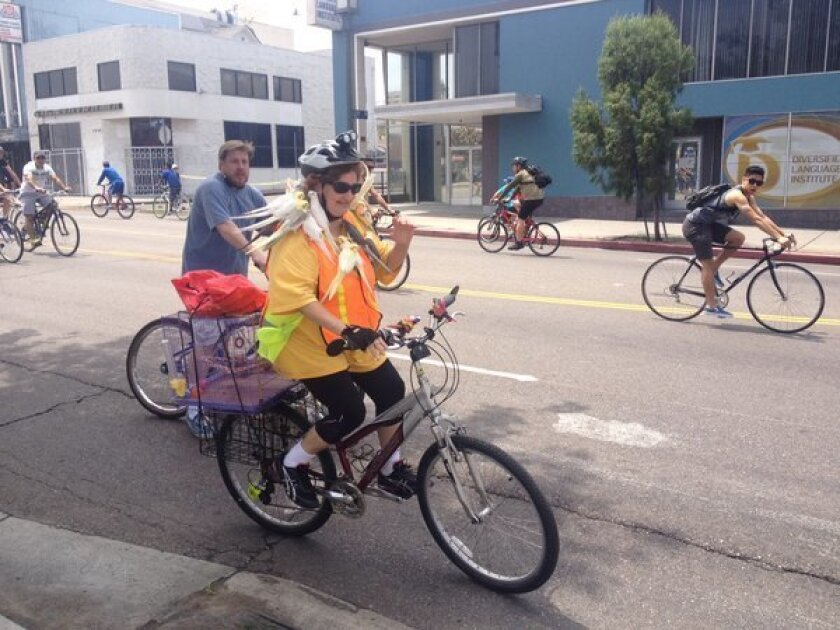 CicLAvia: A cyclist and her beloved cockatiels ride the boulevard