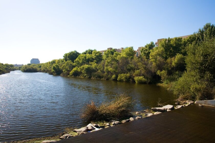 The San Diego River with its planted banks.