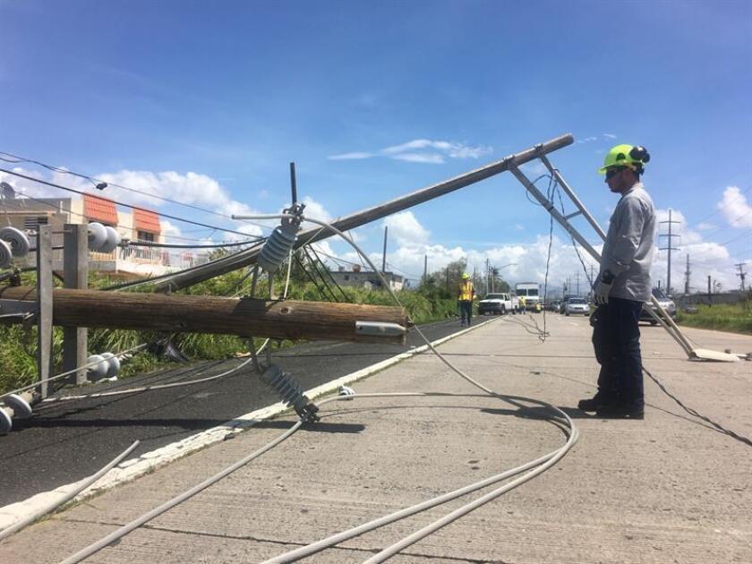 Personal trabaja en la reparación de las redes eléctricas. EFE/ARCHIVO