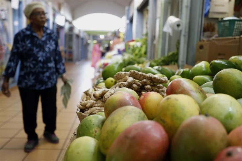 El Departamento de Agricultura de Puerto Rico y su Fondo de Innovación para el Desarrollo Agrícola (FIDA) inauguraron hoy en el municipio de Naranjito, en el centro de la isla, una nueva plaza de mercado, con el fin de aumentar el flujo de consumidores de la región con la compra de productos locales y alimentos frescos. EFE/Archivo