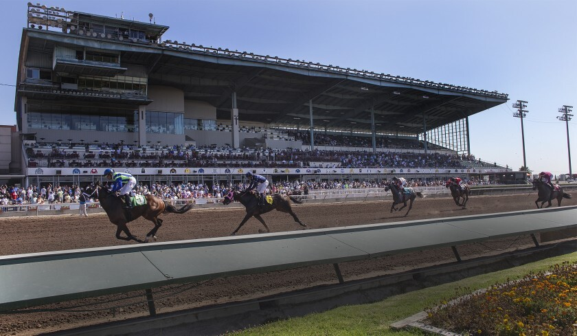 Thoroughbreds race at Los Alamitos Race Course.