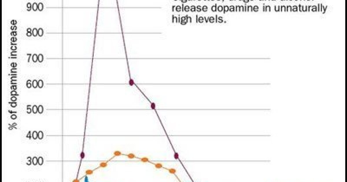 The neuroscience of meth — From pleasure to paranoia, drug's