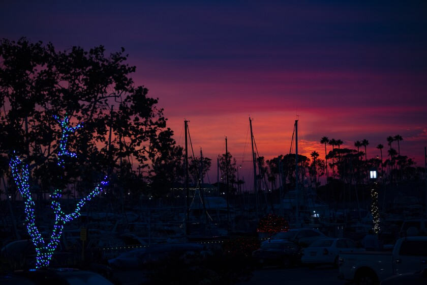 Ship's masts silhouetted against the Dana Point Harbor sunset.