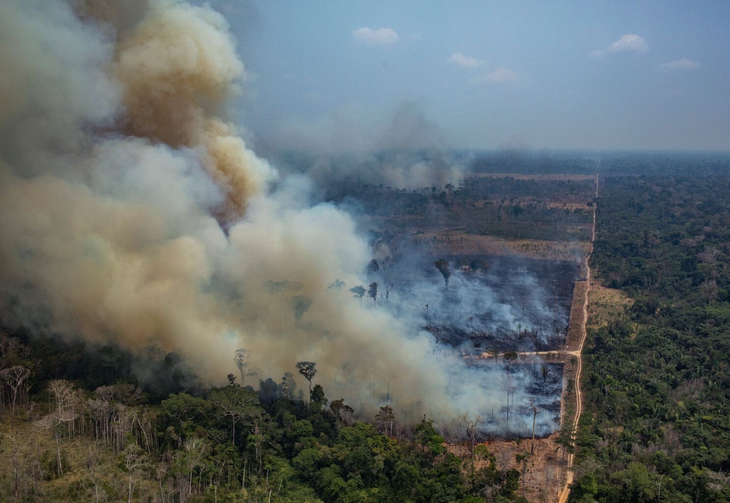The Amazon rainforest is on fire. Climate scientists fear a ...