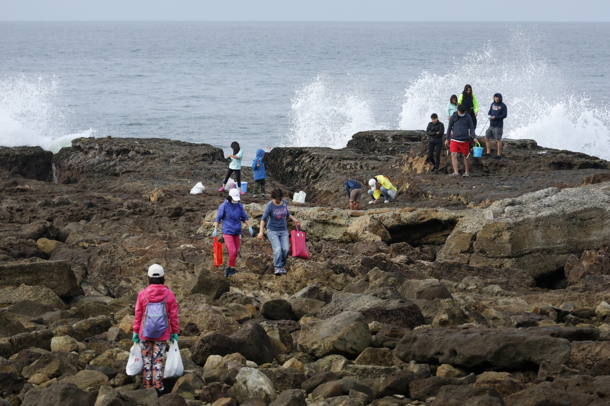 People scour the tide pools in San Pedro.