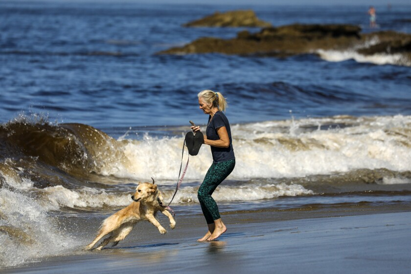 Cece Lewis and her golden retriever, Lala, play in the waves at Laguna Beach.