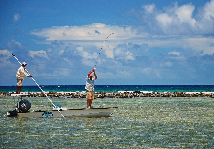 An angler at work trying to fish at the front of a flats skiff at Turneffe Flats resort in the Caribbean.