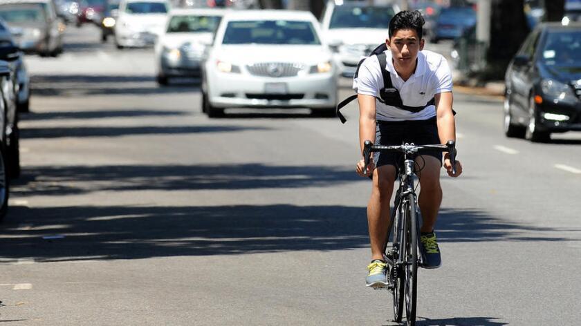 Bike rider in Westwood traffic lane