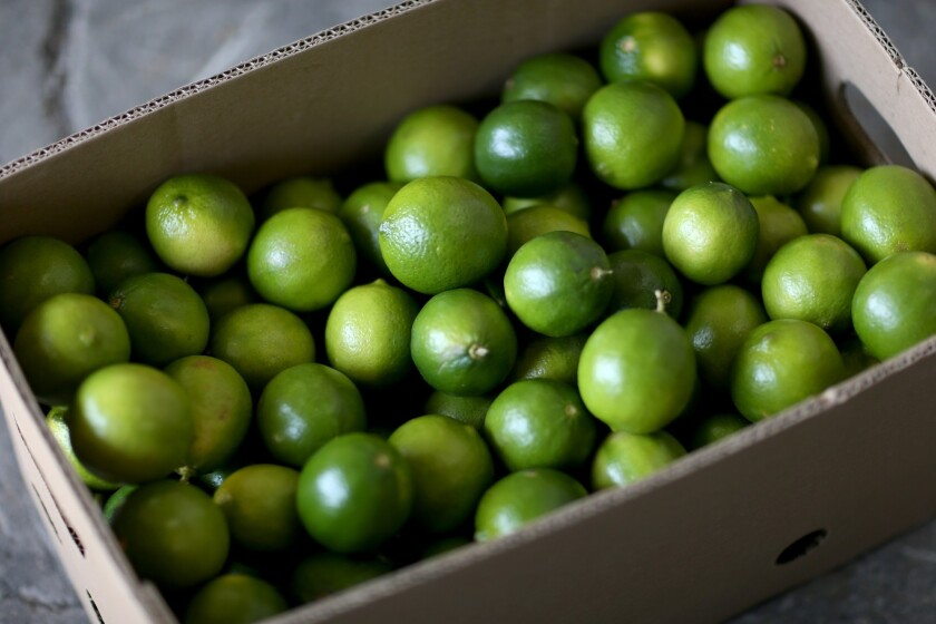 A shortage of limes has led to a dramatic increase in price.