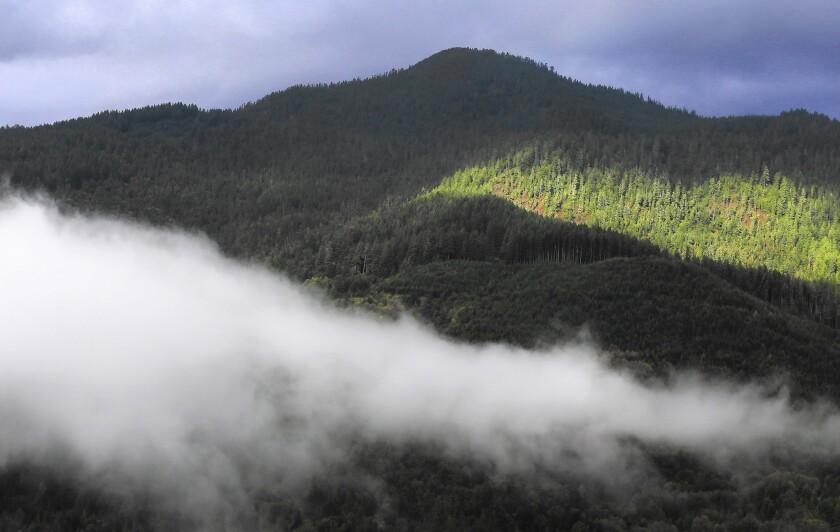 Yurok tribal land