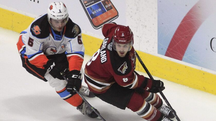 The Gulls' Simon Benoit (left) and the Roadrunners' Connor Garland chase the puck behind the Gulls' goal during the third period at the Valley View Casino Center on Friday night.