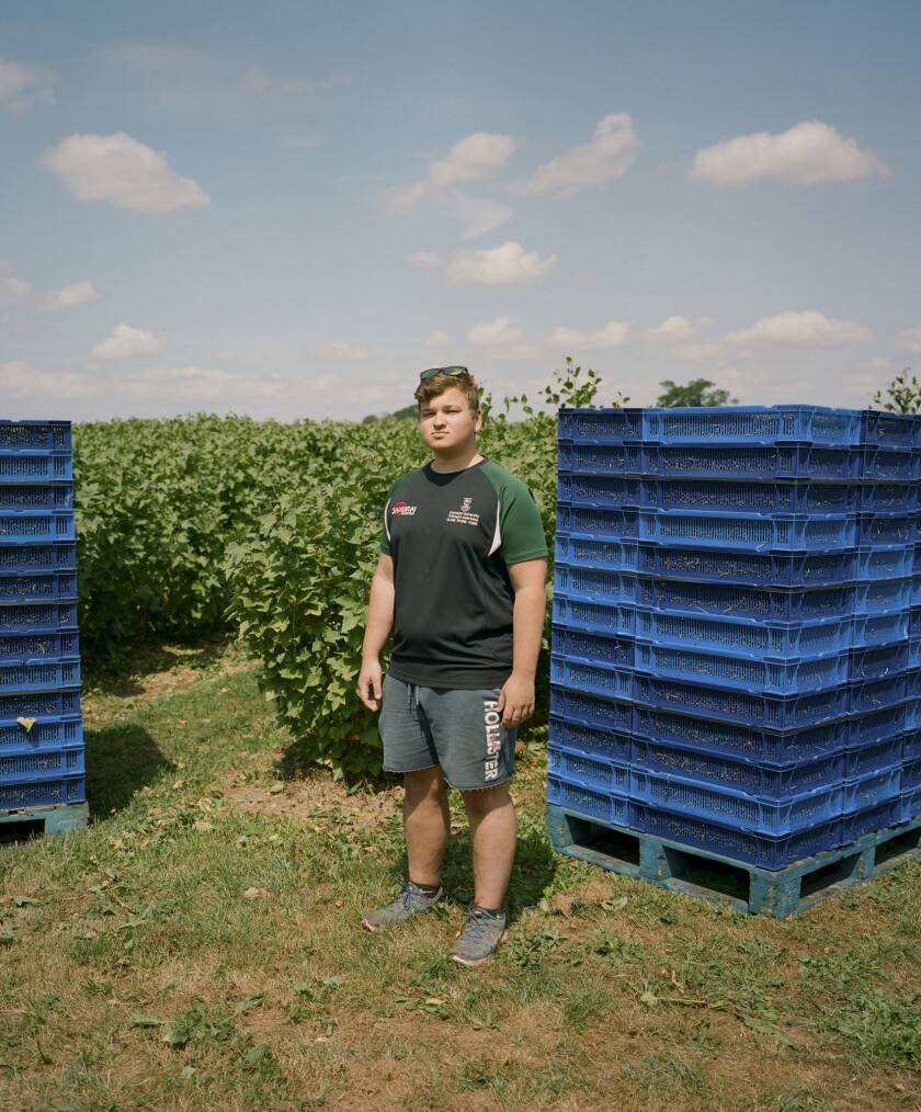 British university student Max Hughes took a summer job at the A.J. & C.I. Snell farm in Herefordshire.
