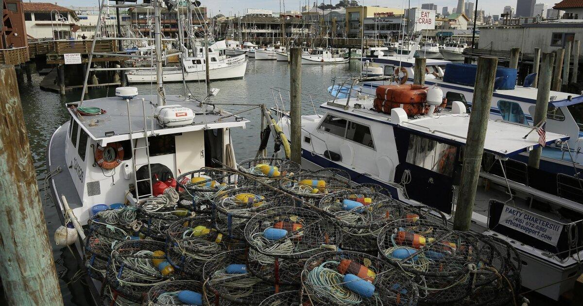 Umweltgruppen drängen Amerikaner Essen mehr Fisch, während die beeindruckenden unten gegen virus