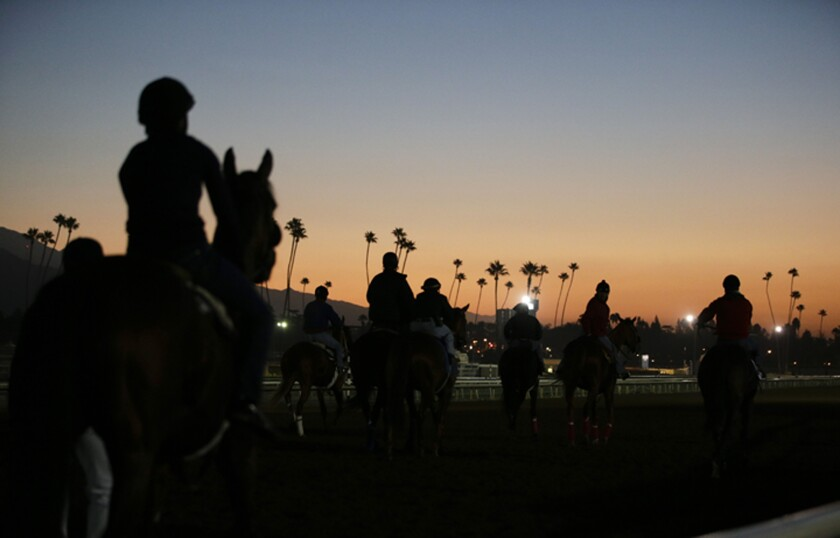 Santa Anita Fatalities Horse Racing