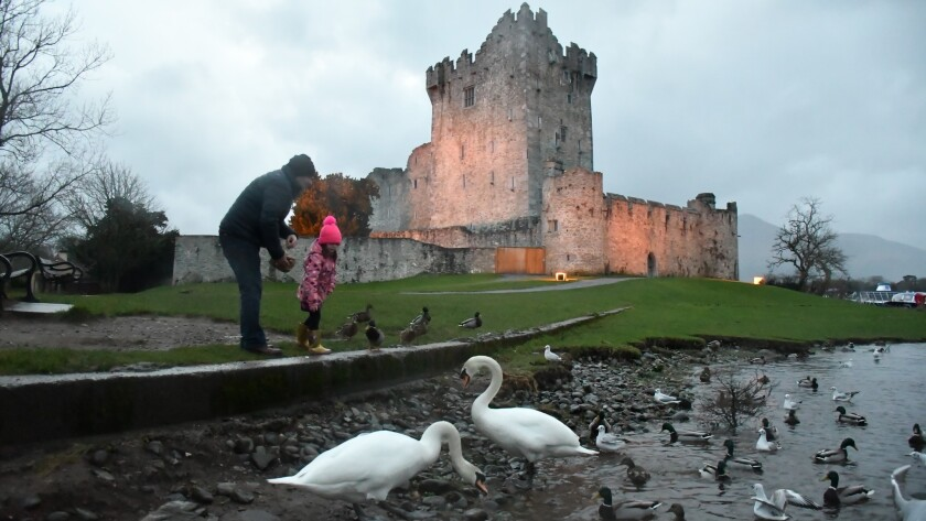 Ross Castle, Killarney, County Kerry, Ireland.