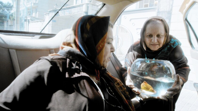 """Passengers embark on a superstitious journey with a goldfish in Jafar Panahi's generous film, """"Taxi,"""" which has the director as a cabdriver picking up a variety of people in Tehran."""