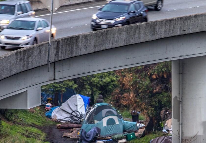 Seattle homeless shooting
