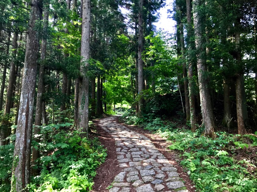 In the woods along Japan's Nakasendo Way.
