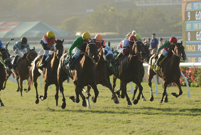 Del Mar's fall meet will have a strong emphasis on turf racing. Photo by Kelley Carlson