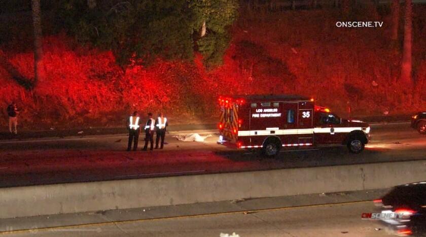 freeway fatal.jpg