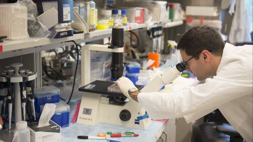 A researcher in a lab at the the National Cancer Institute. President Trump's proposed budget includes a nearly 15% cut for NCI.