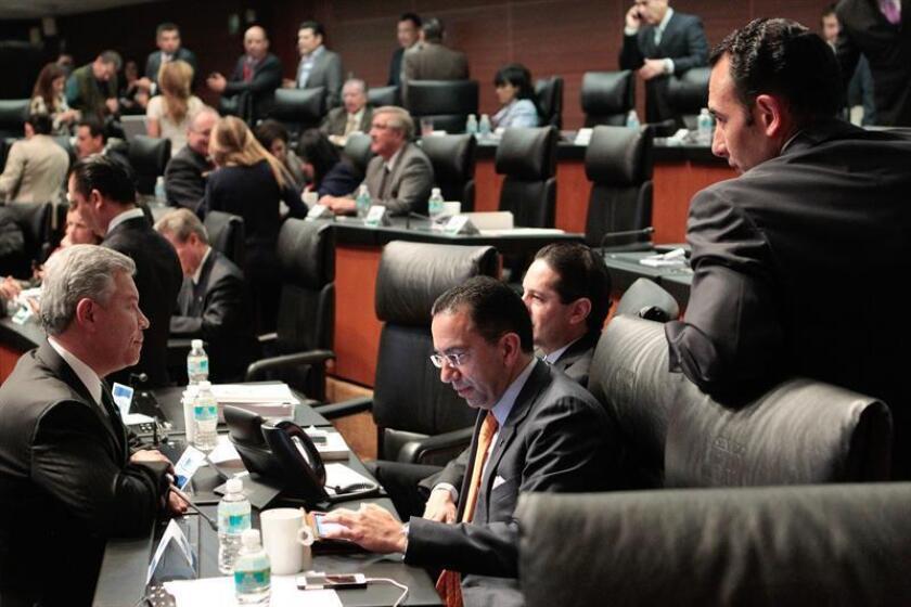Vista de varios senadores durante una sesión. EFE/Archivo