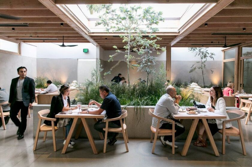 The interior of Auburn includes live greenery and trees and, weather permitting, an open skylight.