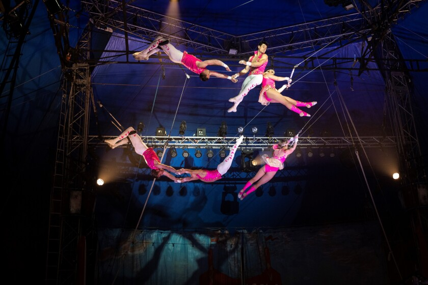 Circus Vargas' new 2020 production highlights an amazing cast of world-renowned performers.