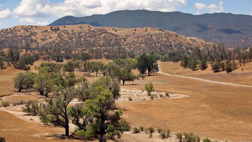SHANDON, CA MAY 18, 2015 -- View of a parched Canyon Ranch that would normally be get 9.85 inches