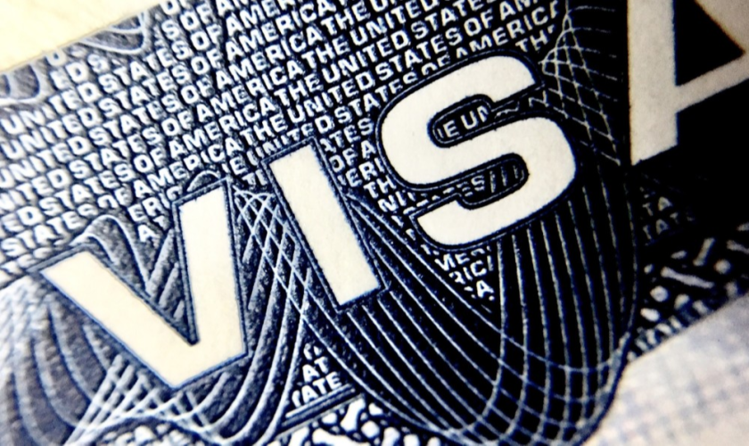 H1-B visas are less used by startups because larger, established companies have an advantage.