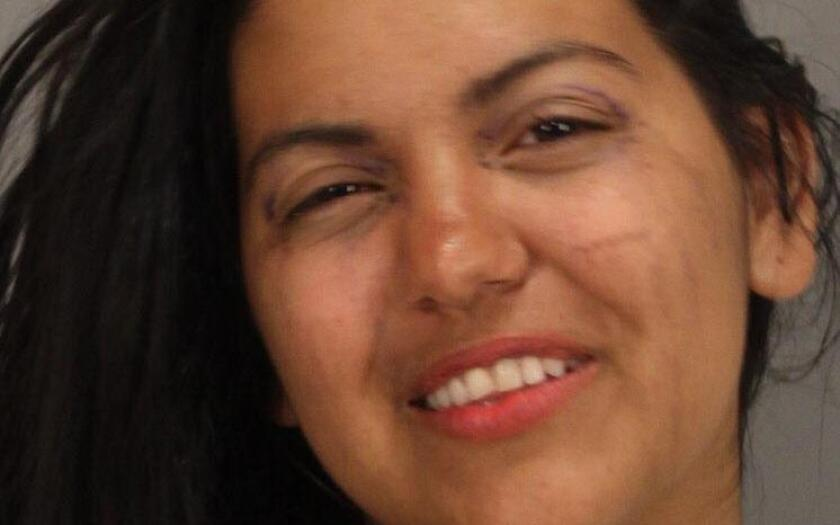 Maria Garate is accused of attacking a 4-year-old girl with a crowbar, San Jose police say.