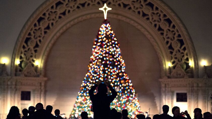 Dec. 8, 2012-- San Diego, Ca. -- | People snap pictures of the huge Christmas tree after it's li