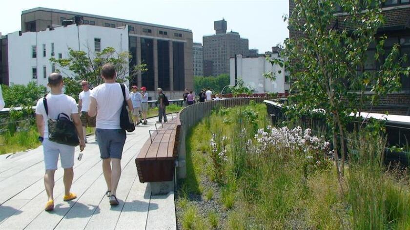 """Los miles de visitantes del """"High Line"""", creado sobre una abandonada vía del tren y con 2,4 kilómetros de longitud, podrán ver hasta marzo del 2019 la pieza """"Somos 11 Millones"""", que también despliega el mismo mensaje en inglés, un letrero con luces de neón colocado en el parque y creado por la artista y activista Andrea Bowers, radicada en Los Ángeles. EFE/Archivo"""