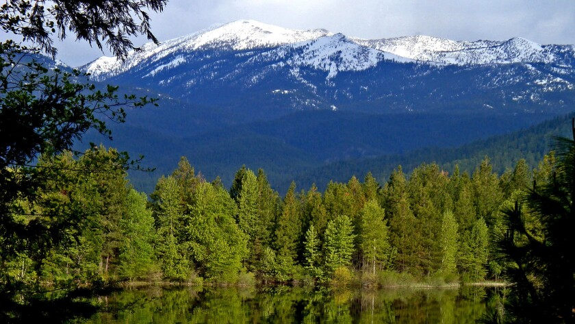 The Cascade Range reflecting on Lake Shastina from the chalets of the Mt. Shasta Resort.