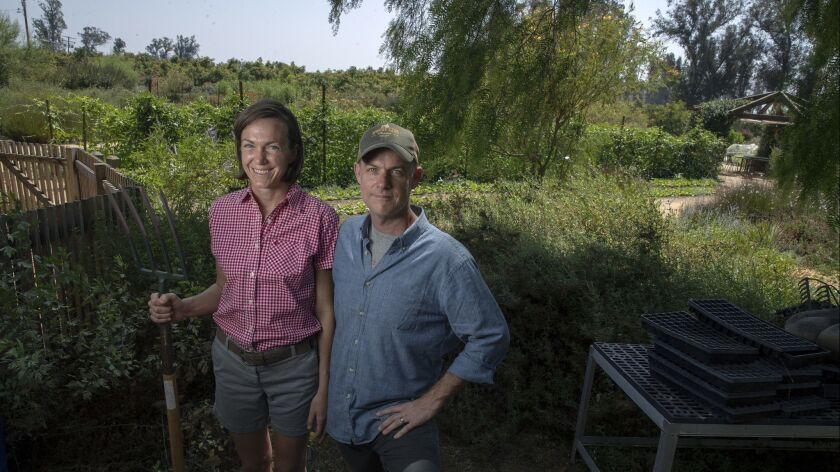 MOORPARK, CALIF. -- SUNDAY, AUGUST 26, 2018: John and Molly Chester on their organic farm in Moorpar