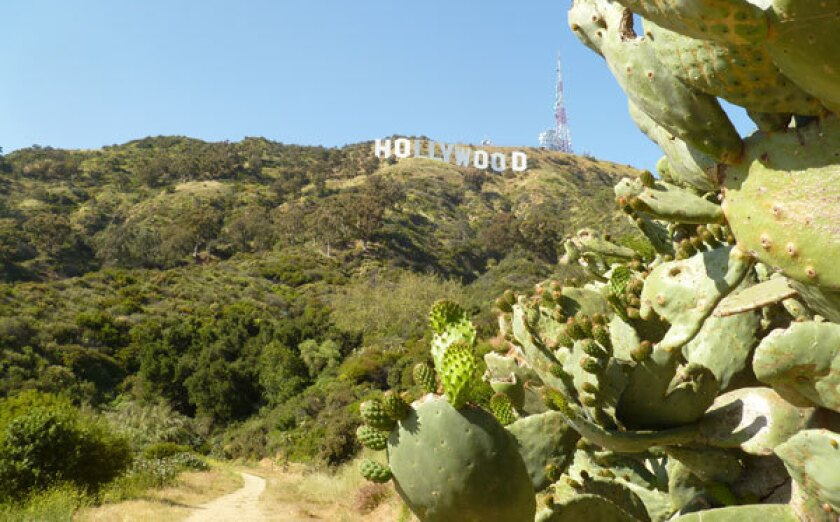 Famous Hollywood sign atop Mt. Lee.
