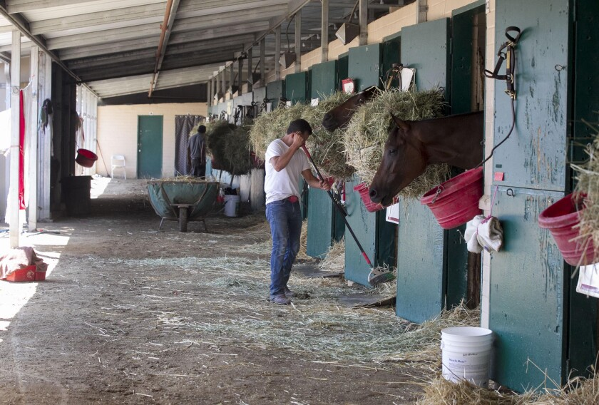 Groom Raul Aguilar rakes in front of the stables of six horses on the backstretch at the Del Mar race track in 2019.