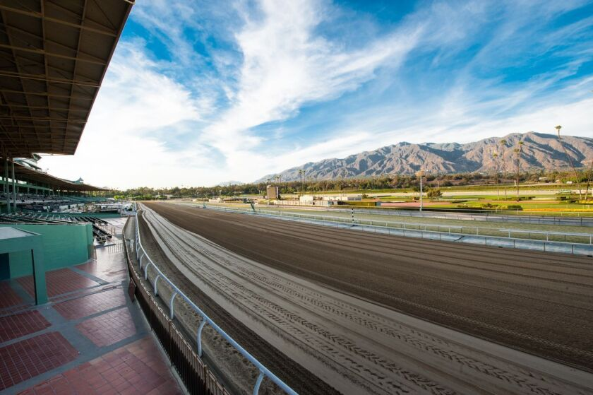 The first turn at Santa Anita Park, the racetrack that ended its meet Sunday.