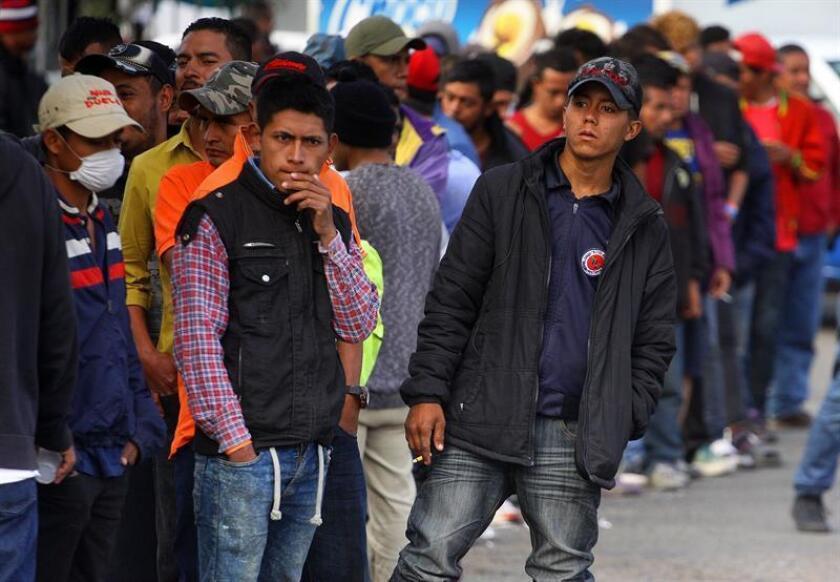 La caravana de migrantes centroamericanos que ha llegado de manera gradual a Tijuana la última semana, representa menos del 1 % de los que transitan México en su camino a Estados Unidos, dijo hoy un experto. EFE/ARCHIVO